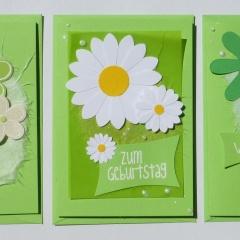Mini-Karten 3-er Set hellgrün mit Blumen C7